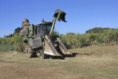 Close up of  cane harvester Royalty Free Stock Photography