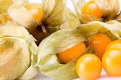 Close up of cape gooseberries Stock Photos