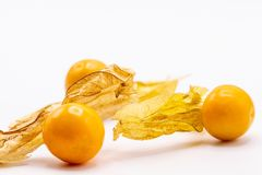 Cape gooseberry fruits Physalis peruvianaisolated on white background.Commonly called goldenberry, golden berry, Pichuberry. Close up Cape gooseberry fruits royalty free stock photography