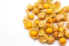 Cape gooseberry fruits Physalis peruvianaisolated on white background.Commonly called goldenberry, golden berry, Pichuberry. Close up Cape gooseberry fruits royalty free stock photos