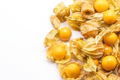 Cape gooseberry fruits Physalis peruvianaisolated on white background.Commonly called goldenberry, golden berry, Pichuberry. Close up Cape gooseberry fruits royalty free stock photo