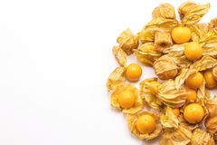 Cape gooseberry fruits Physalis peruvianaisolated on white background.Commonly called goldenberry, golden berry, Pichuberry. Close up Cape gooseberry fruits stock photography