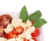 Close up of caprese salad. Macro. Stock Images