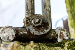 Close up capture on metal bolt and nut in nature. In spring Stock Photography