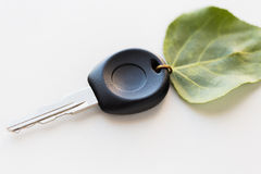 Close up of car key and green leaf Royalty Free Stock Image
