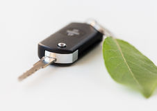 Close up of car key and green leaf Royalty Free Stock Images