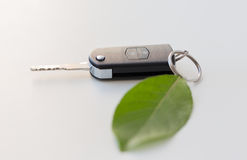 Close up of car key and green leaf Stock Images