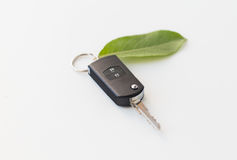 Close up of car key and green leaf Stock Image