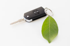 Close up of car key and green leaf Royalty Free Stock Photography