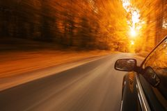Speeding on the empty, autum road Royalty Free Stock Image