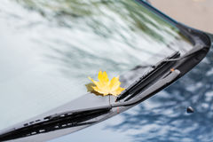 Close up of car wipers with autumn maple leaf Stock Images
