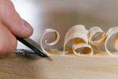 Close-up carpenter man`s hand treats the tree, cuts the shavings. royalty free stock images