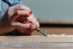 Close-up carpenter woman`s hand with a red manicure treats the tree, cuts the shavings. stock photos