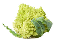 Close-up cauliflower Stock Photography