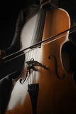 Close up cello Royalty Free Stock Photos