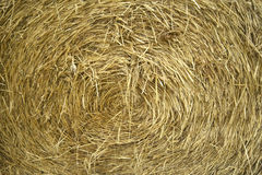 Close-up center of a hay bale. Royalty Free Stock Photography