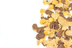 Close up cereal on white background, Copy space Royalty Free Stock Photography