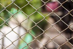 Close up Chain Fence. Metal mesh . Dirty fence with blurred background. Close up Chain Fence. Metal mesh . White tone. Dirty fence with blurred background royalty free stock photo