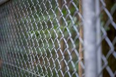 Close-up of chain links in a forest. Close-up angle photograph of the chain links of a metal fence, with forest trees in the background. Border security and royalty free stock image