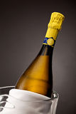 Close up of champagne bottle Royalty Free Stock Photos
