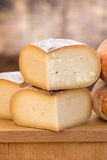 Close up of cheese Stock Image