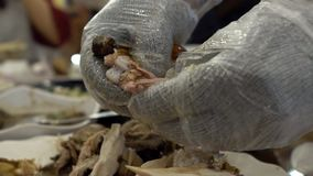 Close-up chef hands preparing traditional chicken food at restaurant Taiwan stock footage
