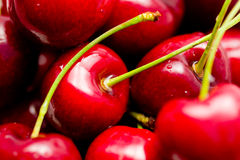 Close-up of cherries. Close-up of multiple moist red cherries Stock Photography