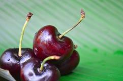 Close up cherries Stock Photos