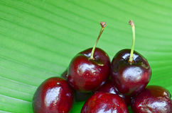 Close up cherries Royalty Free Stock Images