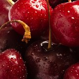 Close Up Cherries Stock Image
