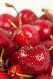 Close-up cherry Stock Image