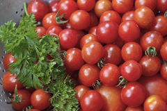 Close Up of Cherry Tomatoes and Parsley in a Metal Colander Stock Photography