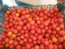 Close-up of cherry tomatoes for sale Stock Images