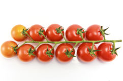 Close Up of cherry tomatoes on the vine. In white background stock photos