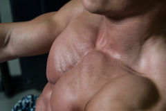 Close-up Chest Exercises On A Machine Royalty Free Stock Images