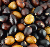 Close-up of chestnuts Stock Photos