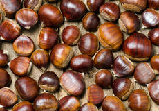 Close up of chestnuts. Illuminated by a single light Stock Photo