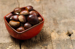 Close up of chestnuts Royalty Free Stock Photo