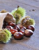 Close-up of chestnuts scattered on wooden table Royalty Free Stock Images