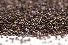 Close up of chia seeds Salvia hispanica on a white isolated background. Stock Images