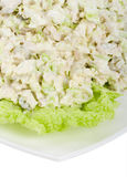 Close-up chicken salad Royalty Free Stock Image