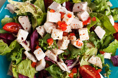 Close up of chicken salad Royalty Free Stock Images