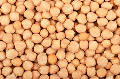 Close up of chickpea Stock Photos