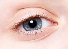 Close-up child eye Royalty Free Stock Image