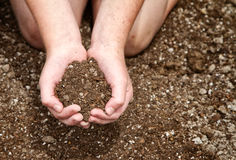 Close-up of child holding dirt Stock Image