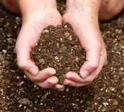 Close-up of child holding dirt Royalty Free Stock Photos