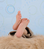 Close-up of a child's feet over  furry blanket Stock Image