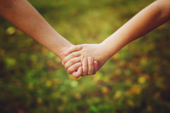 Close up of children holding his hand in summer park outdoor. Royalty Free Stock Photography
