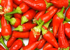Close-up chili peppers background Royalty Free Stock Images