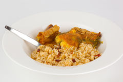 Close-up of chili relleno dish. Close-up of chili relleno and rice dish; isolated Stock Image